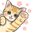 Pop up Sticker of kittens 3.5