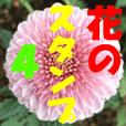 花のスタンプ 4