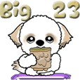 【Big】シーズー犬23『これがあれば』