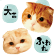 Cat Sticker Daikichi & fuwamaru