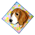 Darling Beagle