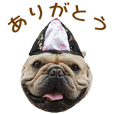 YUKICHI DAIKICHI'S Sticker