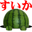 Watermelon photos sticker
