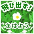 POPUP flower message - green