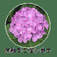 大人のお花のスタンプ【1】
