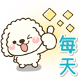white toy poodle dog sticker!!