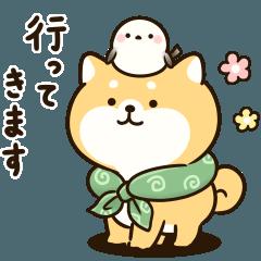 Chubby Mameshiba sticker(Family)