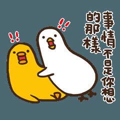 伸縮自如的雞與鴨