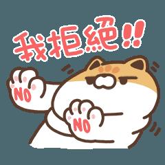 米犬日常 - 金促咪ㄟ貓