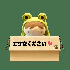 カエルな私②