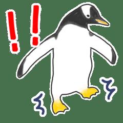 いろいろなペンギン その1