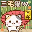 動く♪京都の三毛猫さん