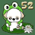 シーズー犬52『梅雨』