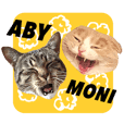 ABBEY & MONICA 's CAT Stickers 2