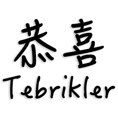 中国語とトルコ語