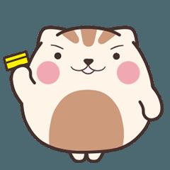 糰子貓 15 【金促咪!】
