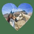 馬好きによる馬スタンプ