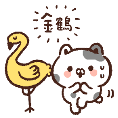 小豆貓之金系列篇