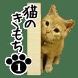 猫のきもち 1