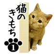 NEKO no kimochi 1 cat