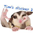 Sugar Glider Tim's sticker 2