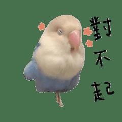 小咕嚕-日常篇
