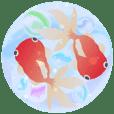 ▶動くお洒落な金魚の挨拶