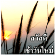 Thai Slogan