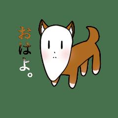 大根犬太郎