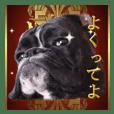 Riesen Stern Boxer 3(ボクサー犬スタンプ)