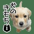 INU no kimochi 1 dog
