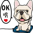 Comedian French Bulldog BUBU
