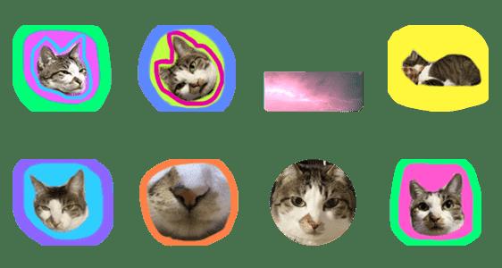 「猫〜〜〜」のLINEスタンプ一覧