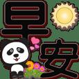 Cute panda-BLACK extra large