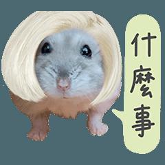 優活倉鼠國2