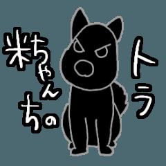Yone-chan's dog is Tora.