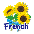 Thanks with flowers in French