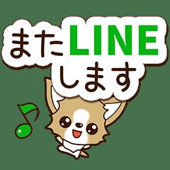 チワワ 犬スタンプ【やさしい長文】