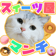 sweets cat
