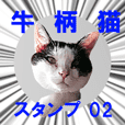 Bicolor cat sticker (series 02)