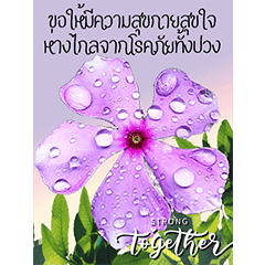 Stronger Together Flowers3
