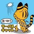 consideration Sarvalcat