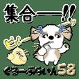 シーズー犬58『グループライン』
