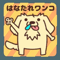 Hanatare Wanko(pretty dog)