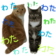 kinaAnco Sticker4