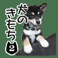 INU no kimochi 2 dog