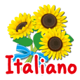 Thanks with flowers in Italian(Itariano)