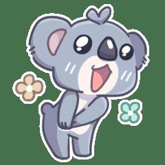 Mignon Koala bear