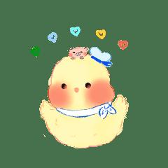 little duck 1111