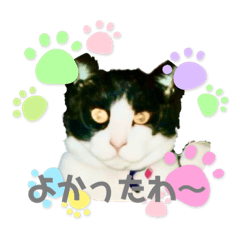 fujimimontana_20210514120959